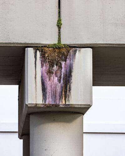 Anastasia Samoylova, 'Concrete Erosion', 2019