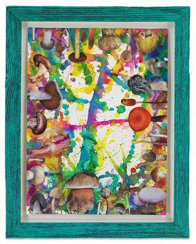 Douglas Melini, 'Untitled (SHRooMS turquoise frame)', 2020