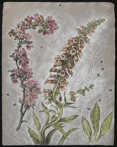 Thomas Woodruff, 'Crab Apple and Foxglove', 2013