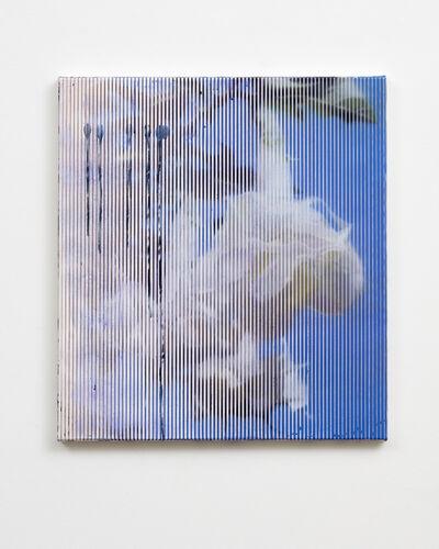 James Cousins, 'pl. 176 untitled', 2018