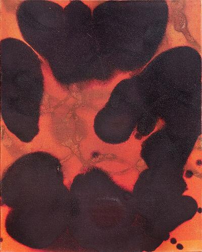 Dirk de Bruycker, 'Nicoya I', 2003
