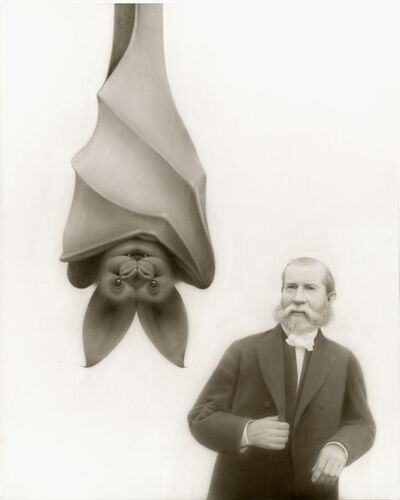 Travis Louie, 'The Bat of Exmoor', 2015