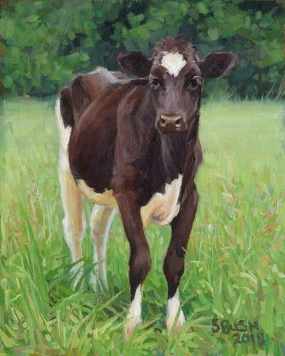 Stephanie Bush, 'Cow Study 42', 2019