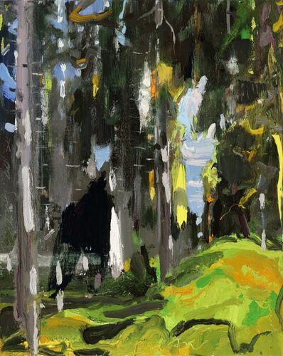 Eric Aho, 'Dickinson's Woods II', 2018