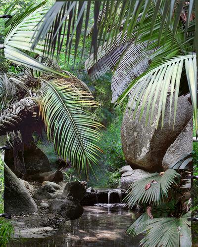 Noemie Goudal, 'Les Mécaniques, Tropiques IV', 2020