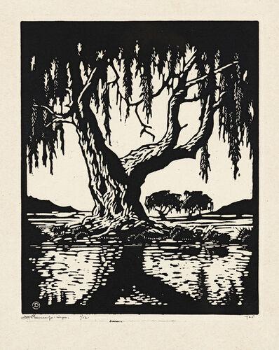 Jacob Hendrik Pierneef, 'Wilgerboom in die Somer (Nilant 79)', 1925
