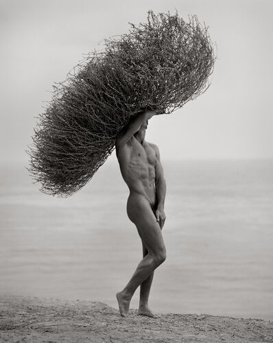 Herb Ritts, 'Male Nude with Tumbleweed', 1986