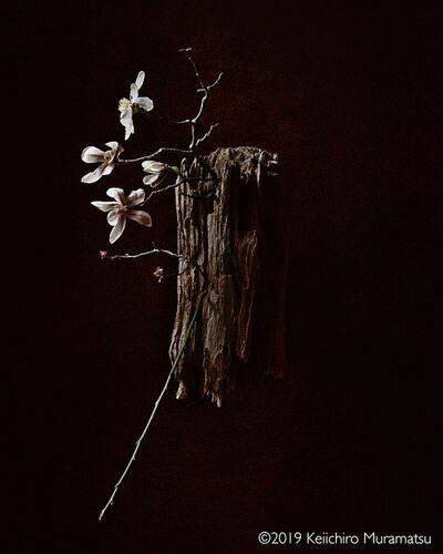 Keiichirô Muramatsu, 'SHINE A LIGHT', 2019