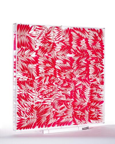 Pilar Cavestany, 'Pink box'