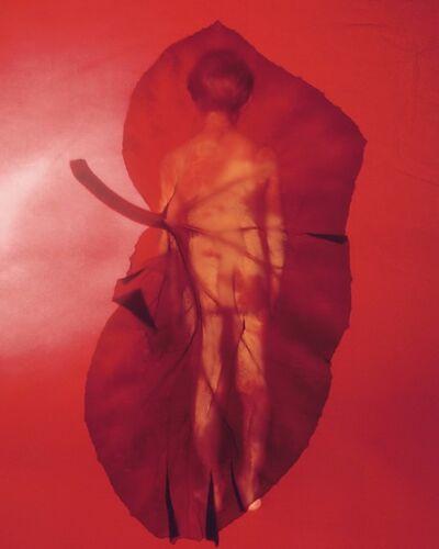 Marjukka Vainio, 'The Heart Has Its Reasons III', 2003.2019