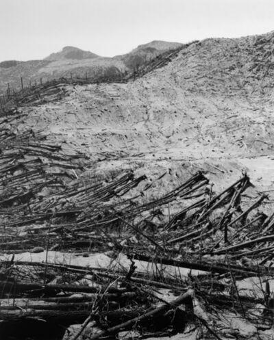 Frank Gohlke, 'Blowdown reveals boundaries of previous clearcut, 9.5 miles NE of Mt. St. Helens, Wash.', 1982