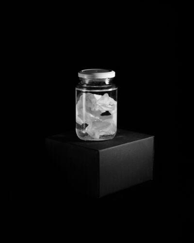 Carla Liesching, 'Field Note: Specimen 1', 2015