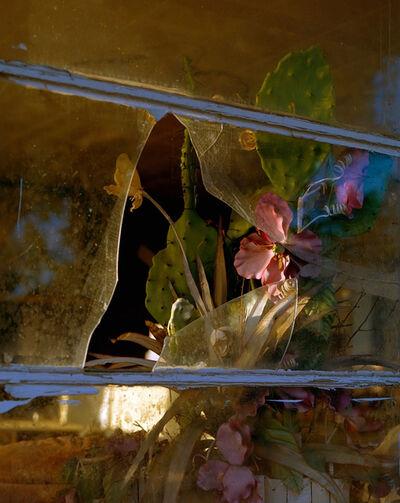 Kent Andreasen, 'A Fine Bouquet', 2015-2018