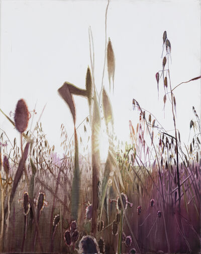 Vibeke Slyngstad, 'Shuafat VI', 2019