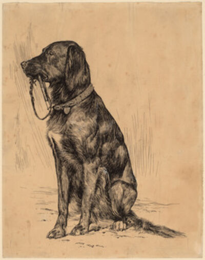 Arthur Bowen Davies, 'Aldrich's Dog', late 1880s