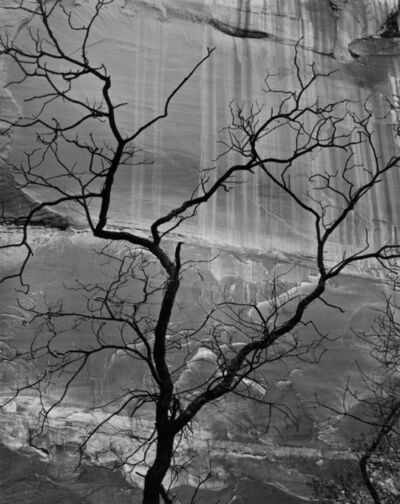 Brett Weston, 'Untitled [Glen Canyon]', 1960