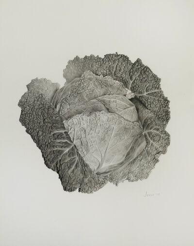 Jessie Babin, 'Cabbage', 2019