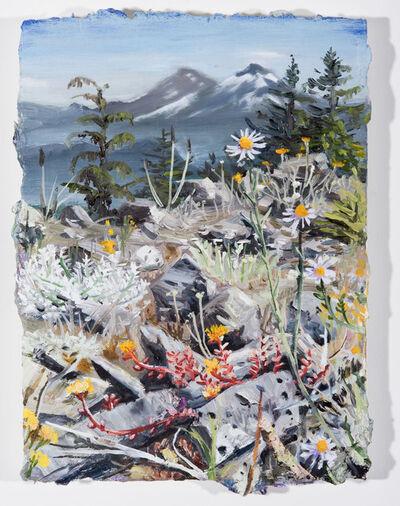 Chris Russell (American, BORN 1983), 'Macduff Mountain Blooms', 2018