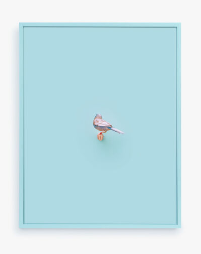 Daniel Handal, 'Cordon Bleu Finch (Clear Day)', 2016