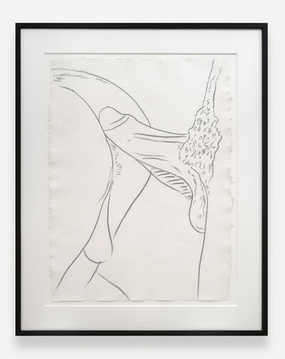 Andy Warhol, 'Buttocks with Penis TOP 81.001', 1977