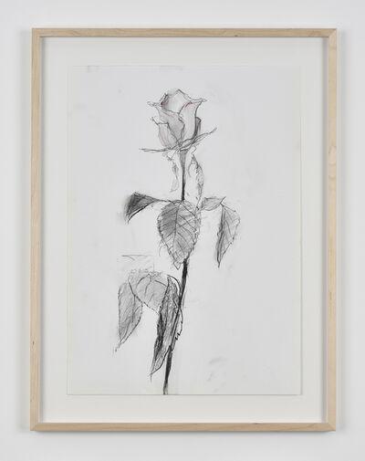 Sabine Moritz, 'Rose 47', 2019