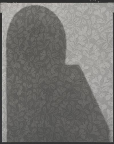 Dawid, 'P-shadows, # 3320', 1989