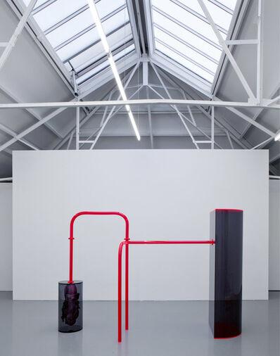 Folkert de Jong, 'XC-315 Digestive System', 2015