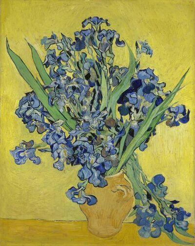 Vincent van Gogh, 'Irises', 1890