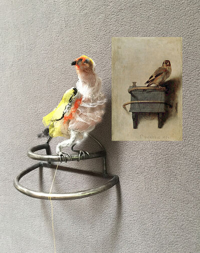 Christy Rupp, 'The goldfinch aft Carel Fabritius 1654', 2017