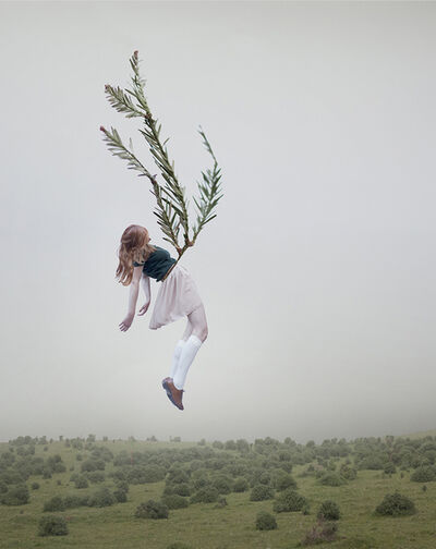 Maia Flore, 'Sleep Elevation #13'