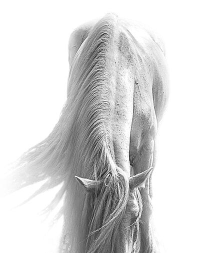 Bob Tabor, 'Horse 98', 2015