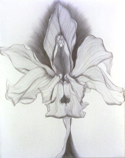 Susan Schwalb, 'Orchid Transformation #2', 1978