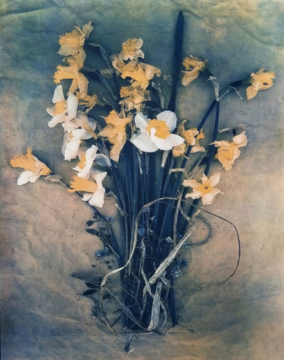 Diana Bloomfield, 'Daffodils & Forget-me-Nots', 2019