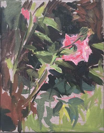 Ekaterina Popova, 'Rose Study', 2020