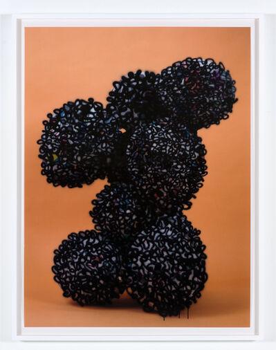 Nicolas Lobo, 'Balloon collage (Palsy version #4) ', 2013