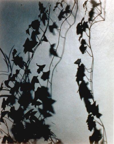 James Welling, 'Night', 1994