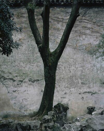 Hélène Binet, 'Lingering A', 2018