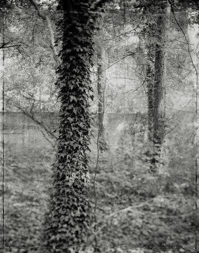 Jessica M. Kaufman, 'Panopticon 7', 2005