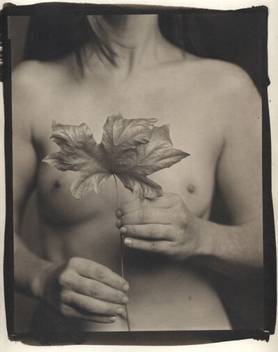 Ray Bidegain, 'Maple Leaf and Female Nude', 2005/2008