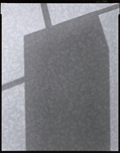 Dawid, 'P-shadows, # 3328', 1989