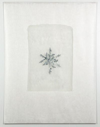 Doug & Mike Starn, 'Sno 8_250 (snow blanket)', 2006