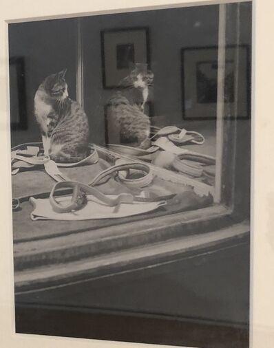 Brassaï, 'Chat se regardant dans la glace', ca. 1938