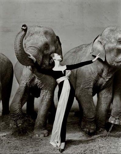 Richard Avedon, 'Dovima with Elephant, Evening Dress by Dior, Cirque d'Hiver, Paris ', 1955