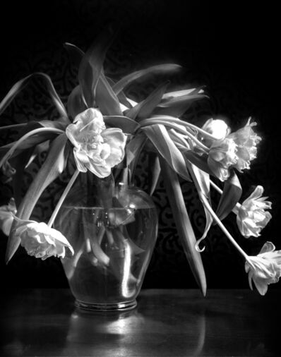 Leslie Hanes, 'Frilly Tulips', 2019