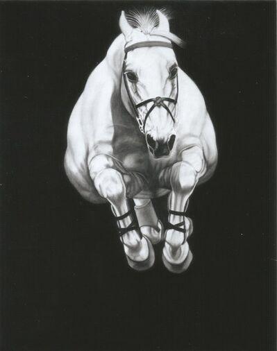 Joseph Piccillo, 'Untitled 9', 2014