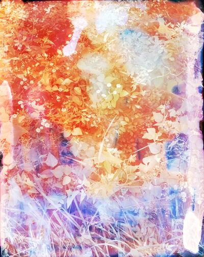 Tealia Ellis Ritter, 'Reenactment 209 (Lavender Spray)', 2015