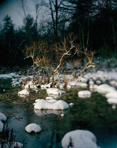 Danelle Manthey, 'Bog', 2012
