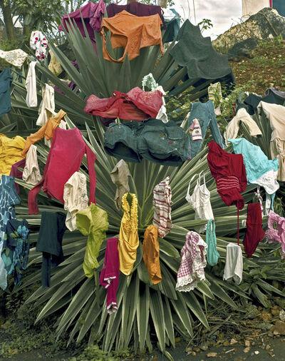 Andrew Moore, 'Ropa limpia, Baracoa', 2012