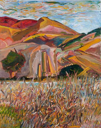Yehouda Chaki, 'The Long Grass 1857', 2019