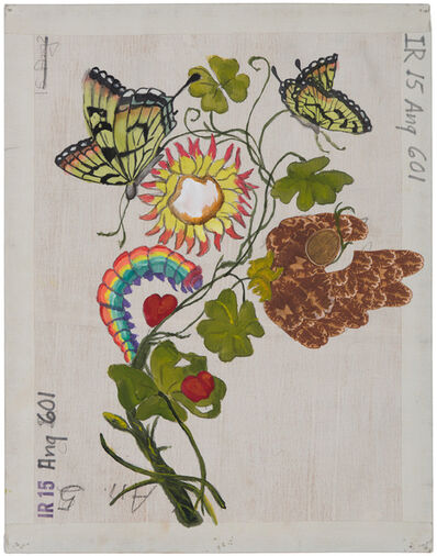 Katherine Sherwood, 'Green Butterflies (after Maria Sibylla Merian)', 2020